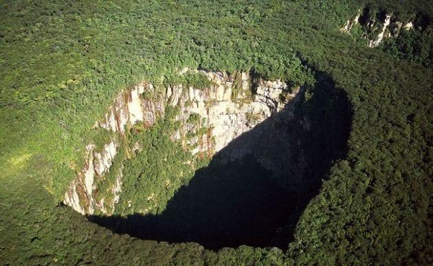 Buraco da Floresta Tropical