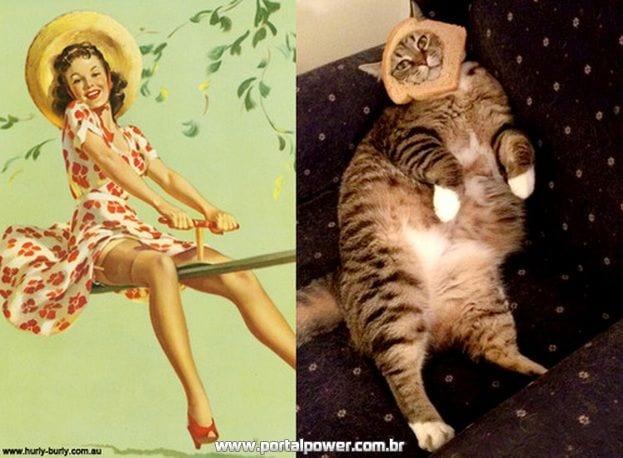 Gatos Imitam a Arte