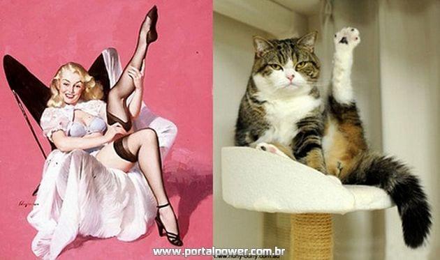 Fotos de Gatos imitando a Arte